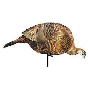 Feeder Hen Turkey Decoy